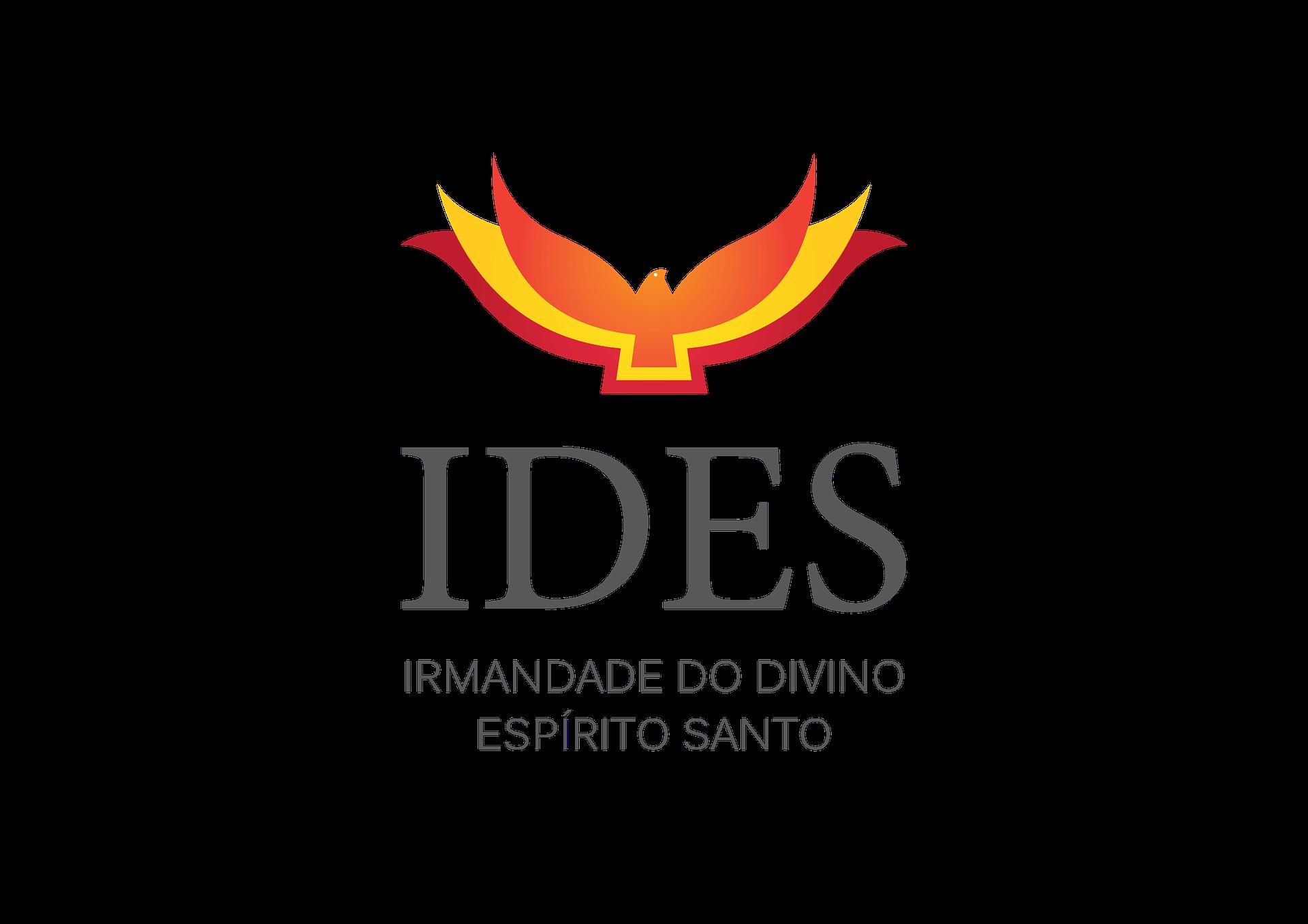 IDES_LOGO fonte cinza (5)